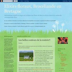 Elixirs floraux, Brocéliande en Bretagne