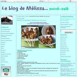 BROCHETTES DE POULET MARINÉ (miel-soja-curry) - Le Blog de Mélissa