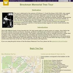 UW - Brockman Memorial Tree Tour