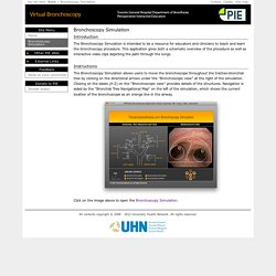 VIRTUAL Bronchoscopy Simulation - PIE, Education, lungs, bronchus
