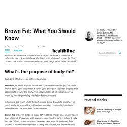 Brown Fat: How to Increase, Thermogenesis, and More