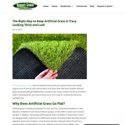 How to Brush and Take Care of Artificial Grass in Tracy