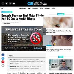 Brussels Becomes First Major City to Halt 5G Due to Health Effects