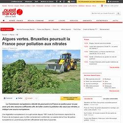 Algues vertes. Bruxelles poursuit la France pour pollution aux nitrates - Environnement