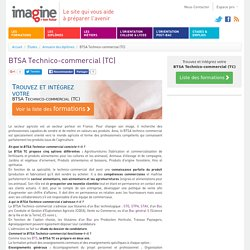BTSA Technico-commercial (TC)