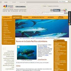 Buceo en la Costa Pacífica colombiana