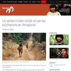 Un enfant indien brûlé vif par les bûcherons en Amazonie
