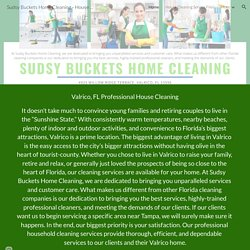 Sudsy Buckets Home Cleaning - House Cleaning Service Valrico