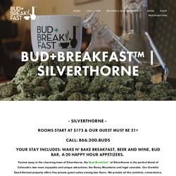 Silverthorne — Bud+Breakfast™