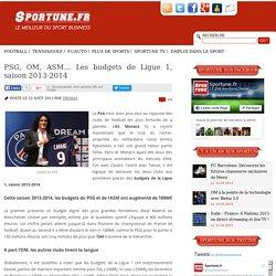 PSG, OM, ASM… Les budgets de Ligue 1, saison 2013-2014