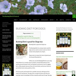 Budwig Diet for Dogs - The Budwig Diet & Protocol