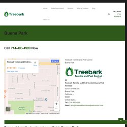 Treebark Termite and Pest Control Services