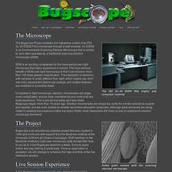 Bugscope: Project Overview
