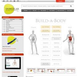 Build-A-Body