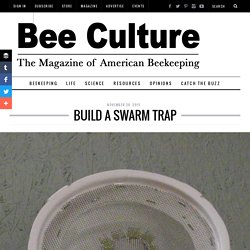 Build A Swarm Trap