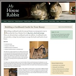 Build a Cardboard Castle for Your Bunny - House Rabbit Care