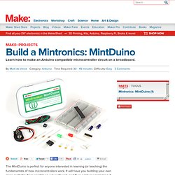 Build a Mintronics: MintDuino
