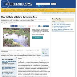How to Build a Natural Swimming Pool - DIY