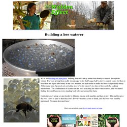 Building a bee waterer