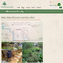 Building a biological DIY greywater system (with no reedbeds) - Milkwood: permaculture courses, skills + stories