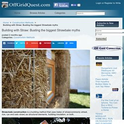 Building with Straw: Busting the biggest Strawbale myths