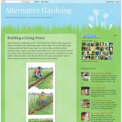 Alternative Gardning: Building a Living Fence