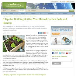 6 Tips for Building Soil for Your Raised Garden Beds and Planters
