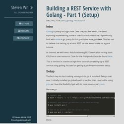 Building a REST Service with Golang - Part 1 (Setup)