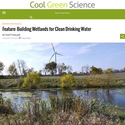 Feature: Building Wetlands for Clean Drinking Water – Cool Green Science