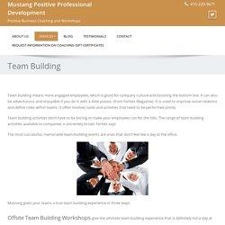 Offsite team building workshops, activities, events in Ontario, Canada