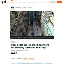 These self-cooled buildings were inspired by termites and frogs
