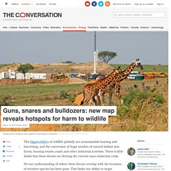 Guns, snares and bulldozers: new map reveals hotspots for harm to wildlife