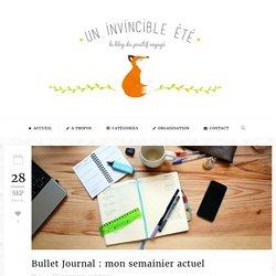Bullet Journal : mon semainier actuel