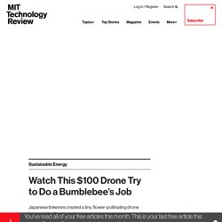 Watch This $100 Drone Try to Do a Bumblebee's Job