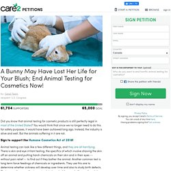 A Bunny May Have Lost Her Life for Your Blush; End Animal Testing for Cosmetics Now!