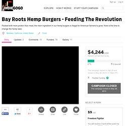 Bay Roots Hemp Burgers - Feeding The Revolution