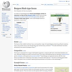 Burgess Shale type fauna