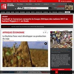 Le Burkina Faso veut développer sa production du soja
