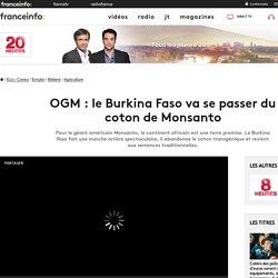 OGM : le Burkina Faso va se passer du coton de Monsanto