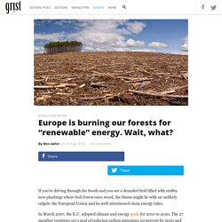 "Europe is burning our forests for ""renewable"" energy. Wait, what?"