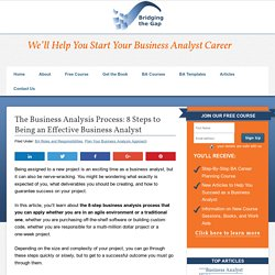 The Business Analysis Process: 8 Steps to Being an Effective Business Analyst