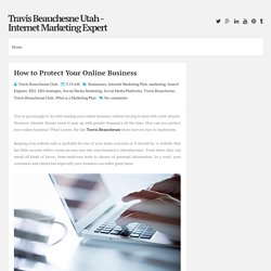 How to Protect Your Online Business ~ Travis Beauchesne Utah - Internet Marketing Expert