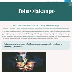 Business Coaches and Business Coaching – What Are They? – Tolu Olakanpo