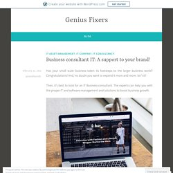 Business consultant IT: A support to your brand! – Genius Fixers