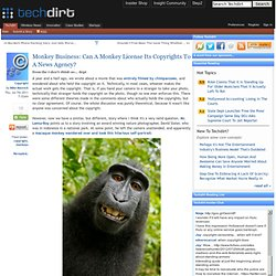 Monkey Business: Can A Monkey License Its Copyrights To A News Agency?