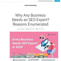 Why Any Business Needs an SEO Expert? Reasons Enumerated – Internet Marketing