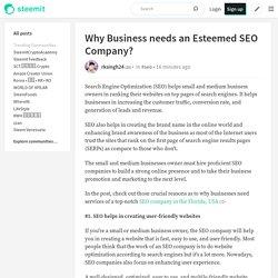 Why Business needs an Esteemed SEO Company?