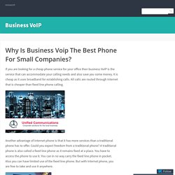 Why Is Business Voip The Best Phone For Small Companies?