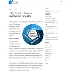 Using Business Process Management for Agility