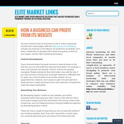 HOW A BUSINESS CAN PROFIT FROM ITS WEBSITE